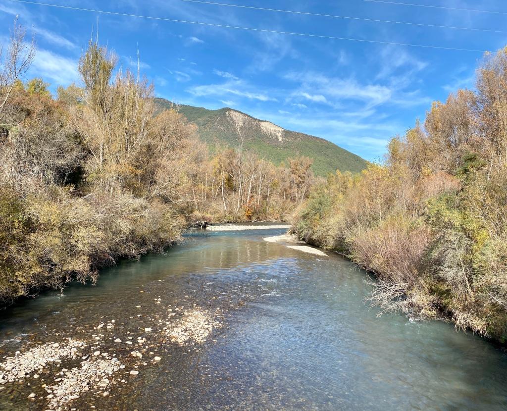 Río Gállego a su paso por el Puente las Pilas.